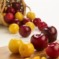 SA Stonefruit Product Photography (4)